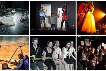 Peripeţiile bravului teatrolog la FEST-FDR 2015