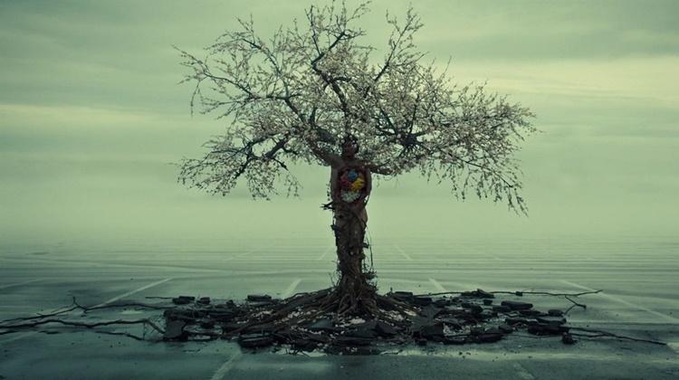 copac hannibal